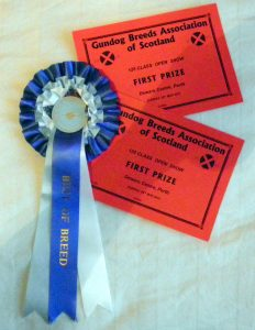 Best of Breed Rosette and Certificates