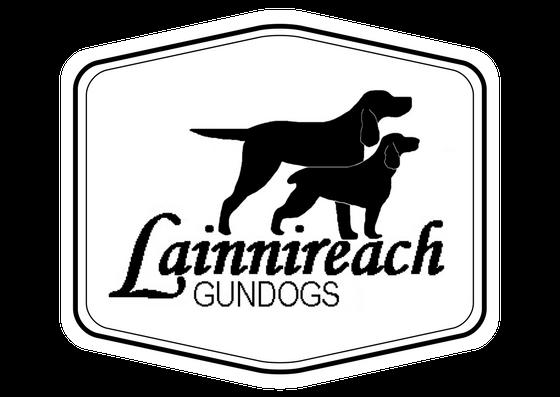 Lainnireach Gundogs