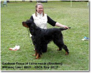 Bracken GSCS May 2012 - winning limit bitch and her stud book