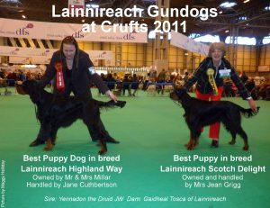 Best Puppy Dog and Best Puppy Bitch Crufts 2011