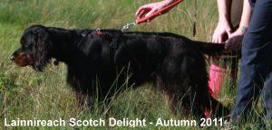 Kerra 1 Autumn 2011