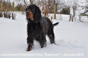 Rannoch Jan 2013