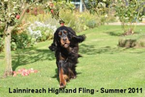 Rannoch Summer 2011